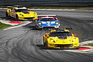 Corvette racers confident but wary ahead of showdown