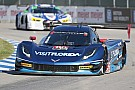 IMSA Disappointment in Detroit for Visit Florida Racing