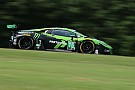 IMSA Antinucci to make Petit Le Mans debut in Lamborghini