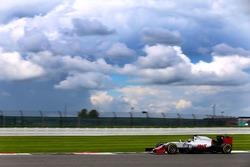 Santino Ferrucci, Haas F1 Team VF-16 Development Driver