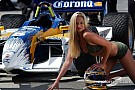 Gold Coast Indycar Grid Girls