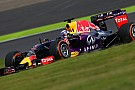 Webber: Red Bull puede aguantar la