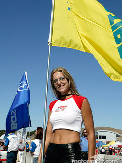 SPEED flag girl