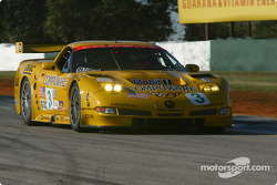 #3 Corvette Racing Chevrolet Corvette C5-R: Ron Fellows, Johnny O'Connell, Frank Freon