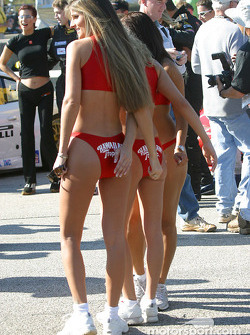 Starting grid: the Hawaiian Tropic girls pose