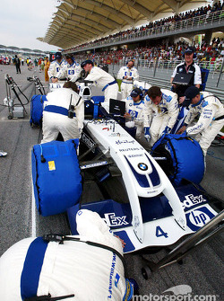Team Williams on the starting grid