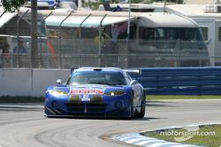 #71 Carsport America Dodge Viper GTS-R: Jean-Phillippe Belloc, Tom Weickardt, Kevin Allen