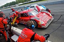 Pit stop for #99 GAINSCO/ Bob Stallings Racing Chevrolet Riley: Jon Fogarty, Alex Gurney