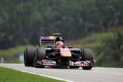 Ricciardo, Toro Rosso
