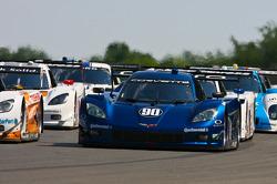 #90 Spirit of Daytona Racing Corvette DP: Richard Westbrook, Michael Valiante