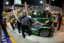 Pit stop for #30 Status Grand Prix Lola Judd: Alexander Sims, Yelmer Buurman, Romain Iannetta
