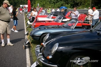 Sunday in the Park Concours & Gathering of the Marques