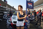 Tom Coronel, BMW 320 TC, ROAL Motorsport and Grid girl