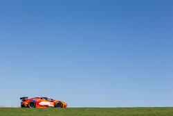 #81 8 Star Motorsports Ferrari 458 Italia: Enzo Potolicchio, Rui Aguas, Matteo Malucelli