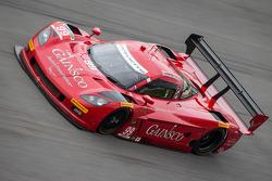 TUSC: #99 GAINSCO / Bob Stallings Racing Corvette DP Chevrolet: Alex Gurney, Jon Fogarty, Darren Law, Memo Gidley
