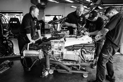 TRG-AMR team members at work