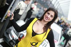 Grid girl of Daniel Juncadella, Mercedes AMG DTM-Team Mücke DTM Mercedes AMG C-Coupé