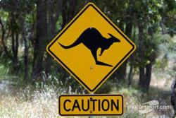 Beware of the kangaroo