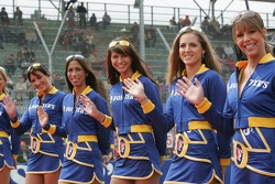 Spectacular grid girls
