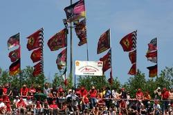 Fan club of Michael Schumacher