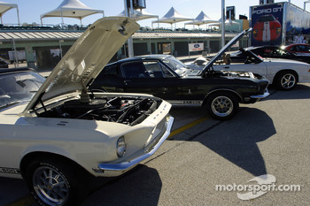 Ford Innovation Drive: new and vintage Mustangs on display