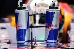 Daniel Ricciardo, Red Bull Racing RB11 with drinks bottles
