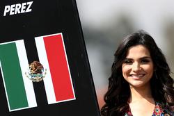 Chicas de la parrilla, Sergio Pérez, Sahara Force India