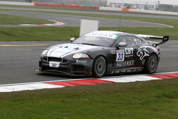 #33 APEX Motorsport Jaguar XK Coupe: Phil Quaife, Stuart Hall