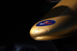 Toro Rosso nose cone