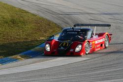 #77 Doran Racing Ford Dallara: Memo Gidley, Dion von Moltke