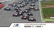 31st race of the 2015 season / 1st race at Hockenheim