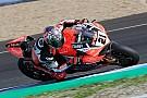WSBK L'Aruba Racing schiererà una terza Ducati in SBK per Rinaldi nel 2018