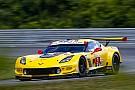 IMSA Lime Rock IMSA: Garcia takes sub-50sec pole for Corvette