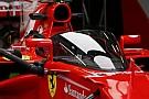 McLaren: F1, Kalkan/Halo kararı karşısında zor durumda