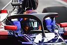 """Fórmula 1 Toro Rosso: Halo de 2018 terá mais """"cara de F1"""""""