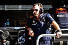 Formula 1 Horner: Hamilton Red Bull'la görüşmüştü