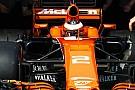"""Formule 1 Brown: """"Vandoorne een supertalent en toekomstig wereldkampioen"""""""