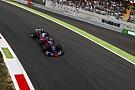 F1-Pilot Carlos Sainz würde auch bleiben: Verdanke Toro Rosso alles