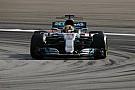 Hamilton pole köre Malajziából