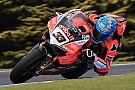 Superbike-WM Ducati: Marco Melandri stiehlt Chaz Davies die Show
