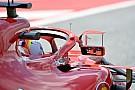 FIA-Rückzieher: Ferrari-Rückspiegel doch illegal!