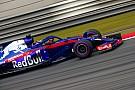 Формула 1 В Toro Rosso извлекли выгоду из марафонского опыта Хартли