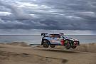WRC WRC Australien: Thierry Neuville gewinnt das Saisonfinale