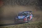 WRC WRC-Rallye Portugal: Paddon nach Unfall im Krankenhaus