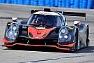 IMSA Others Nico Jamin et Ligier font coup double à Sebring