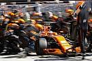Formula 1 Perpanjang kontrak, Vandoorne disambut penalti mundur 35 grid