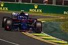 Haas недосяжні для Toro Rosso - Гаслі