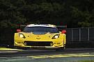 IMSA Malchance pour BMW, victoire pour Corvette