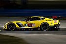 IMSA Corvette stars wary of rookie endurance drivers at Rolex 24