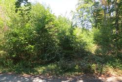 Découverte de l'ancien tracé de Hockenheim